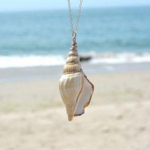 NWOT Seashell Necklace
